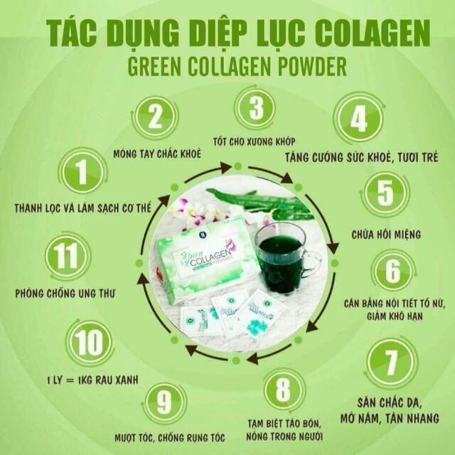 diep-luc-Collagen-co-tot-khong